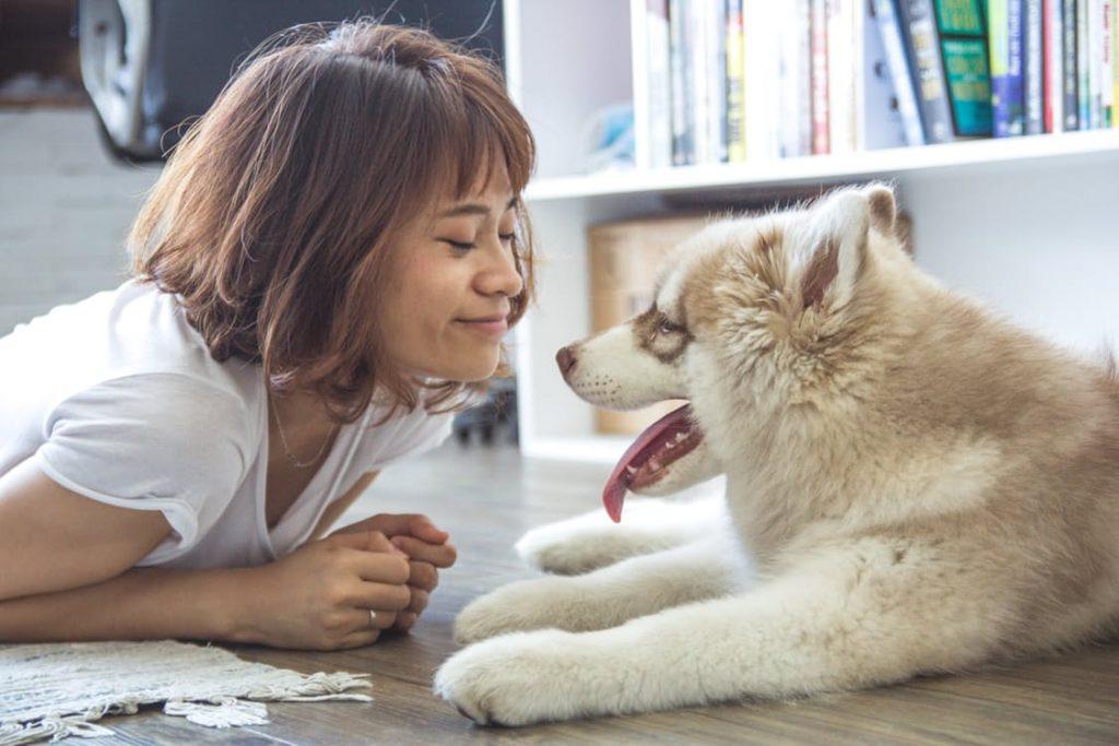 Cãe e sua Dona